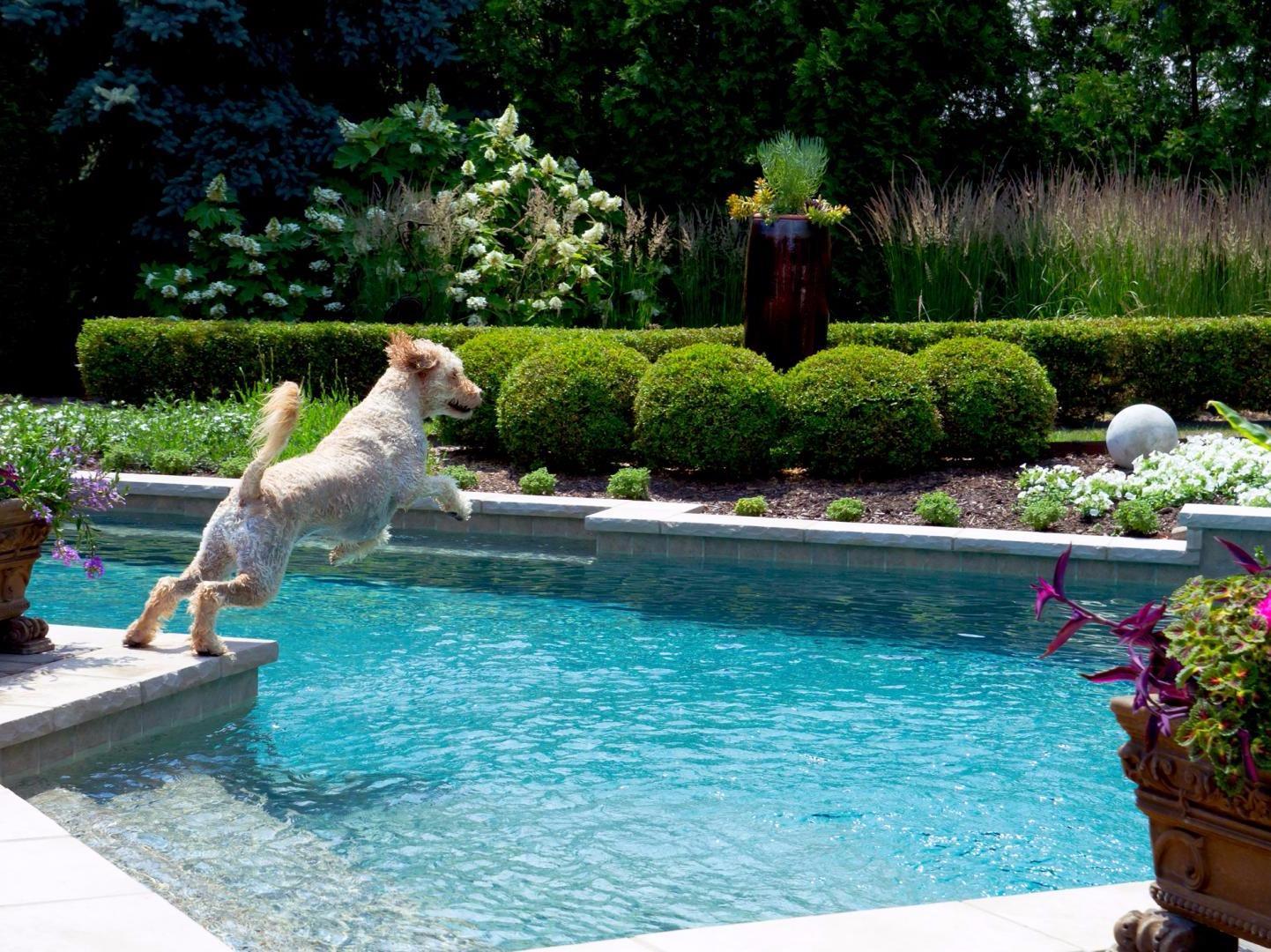 R paration piscine creus e repentigny terrebonne l for Devis piscine creusee